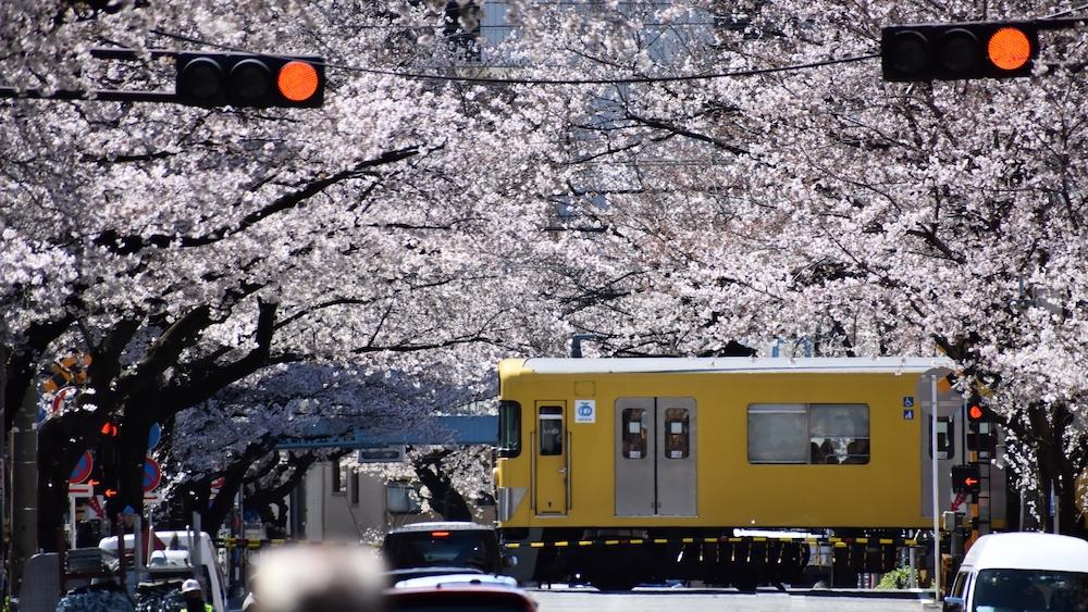 Araiyakushi-mae Station_3320993_m