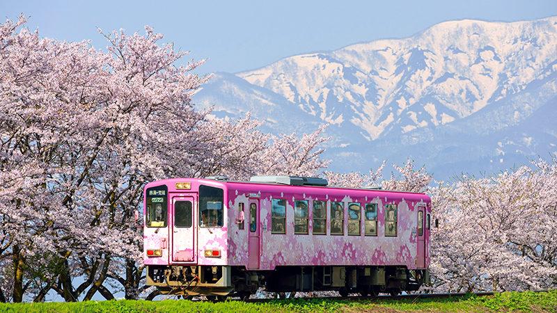 Yamagata 1-day Pass