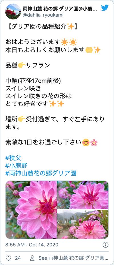 chichibu- twitter-006