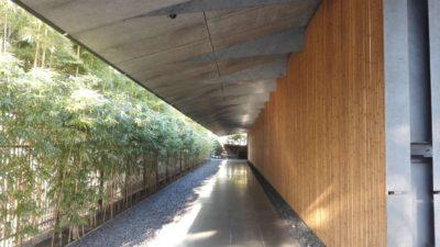 Bamboo street in Nezu Museum