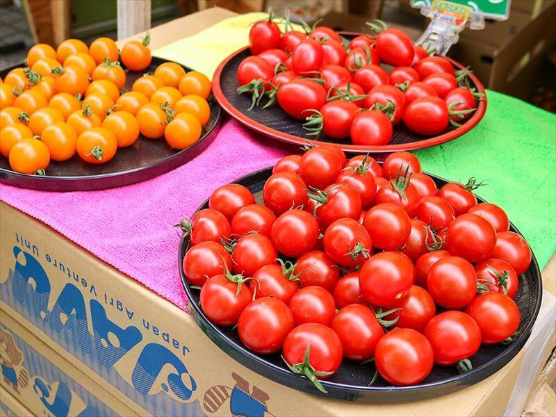 A variety of tomatoes are out for anybody to try.