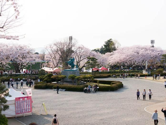 Yamagata Sakura Matsuri Daytime