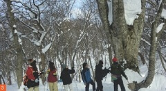 Memorable-Winter-in-Northern-Tohoku-4