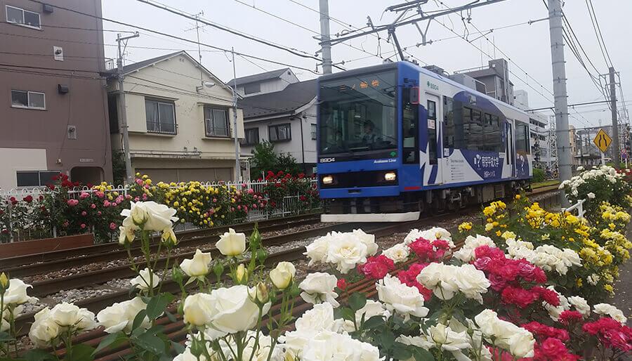 Photo: © Bureau of Transportation. Tokyo Metropolitan Government.
