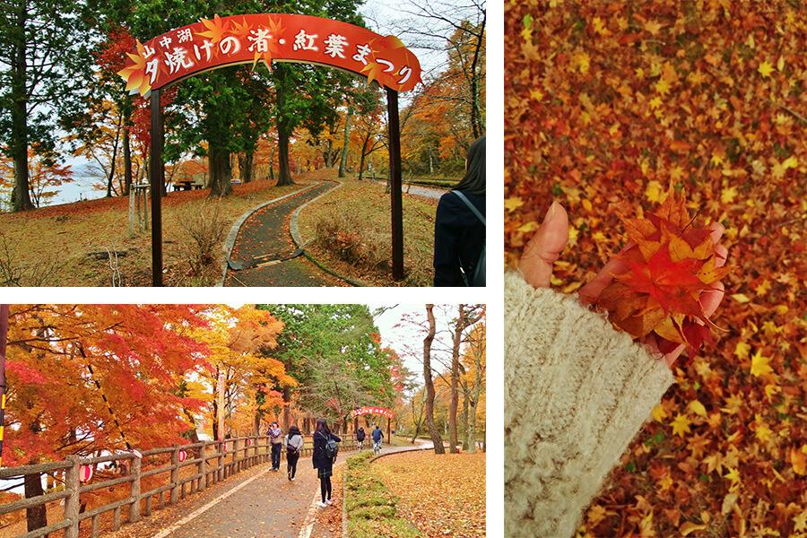"""The """"Yuyake no Nagisa, Fall Foilage Festival"""" at Yamanakako is romantic and charming"""