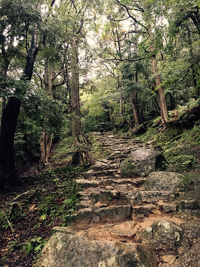The steep path made out of natural stepping stones towards Kamikura shrine