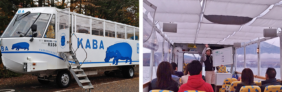 Board the amphibian bus to explore the area