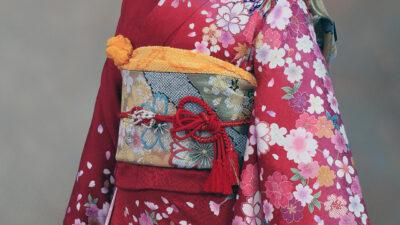 formal kimono type