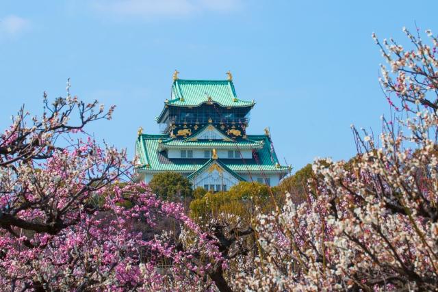Osaka Castle Spring