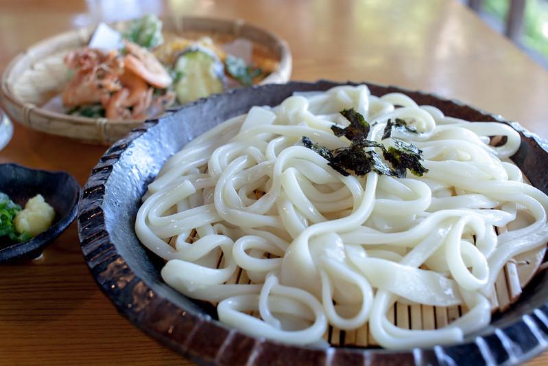 Japanese traditional dish udon