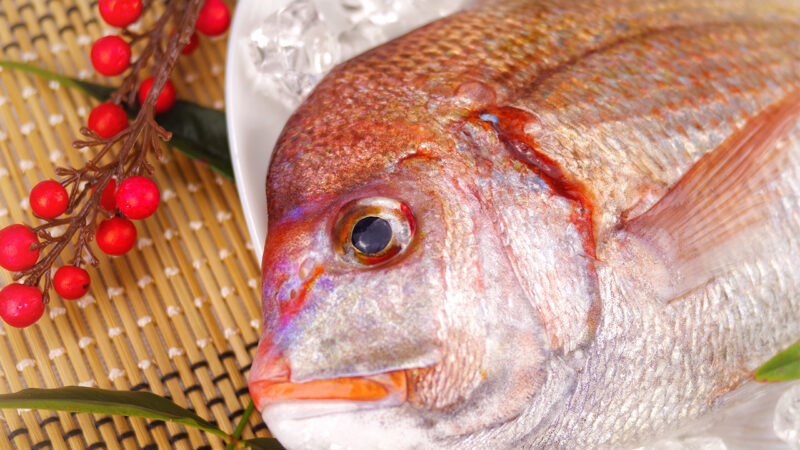 Japanese Winter Seafood Red Seabream