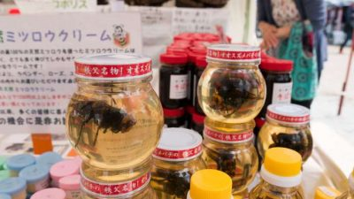 Honey bees in honey, a Chichibu specialty.